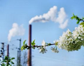 Umweltschutz & Nachhaltigkeit